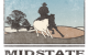 Mid-State-Cow-Horse-Association-Logo-Design